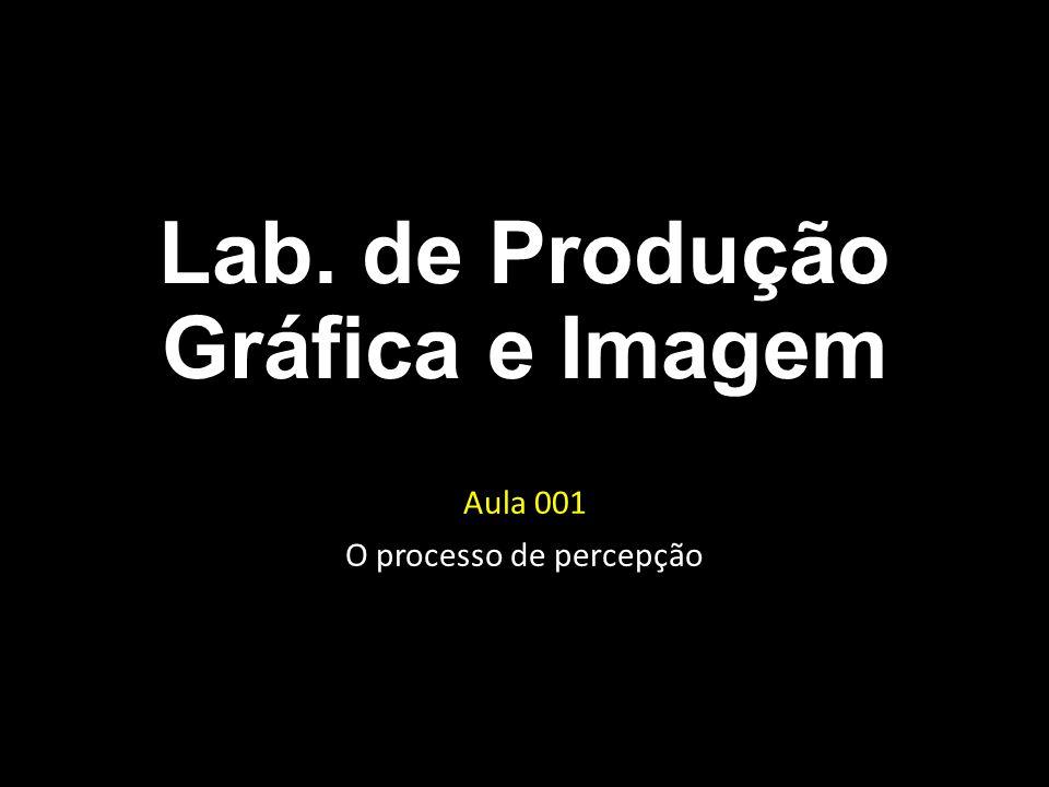 Lab. de Produção Gráfica e Imagem Aula 001 O processo de percepção