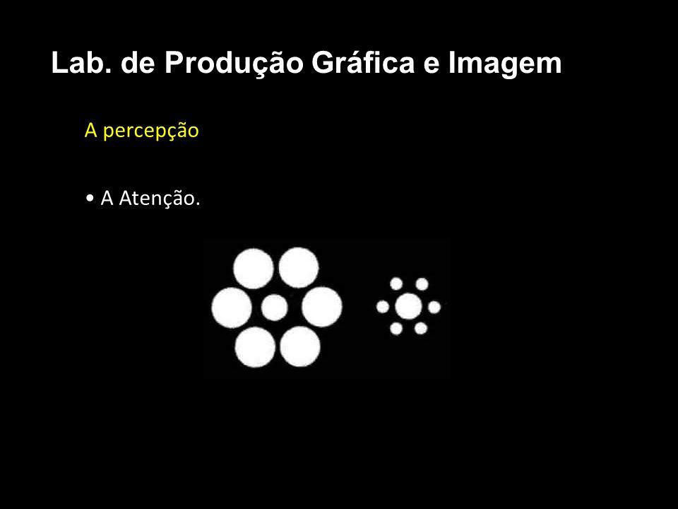A percepção A Atenção. Lab. de Produção Gráfica e Imagem