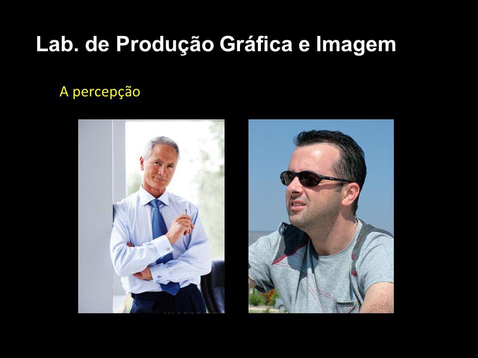 A percepção A Consciência. Lab. de Produção Gráfica e Imagem