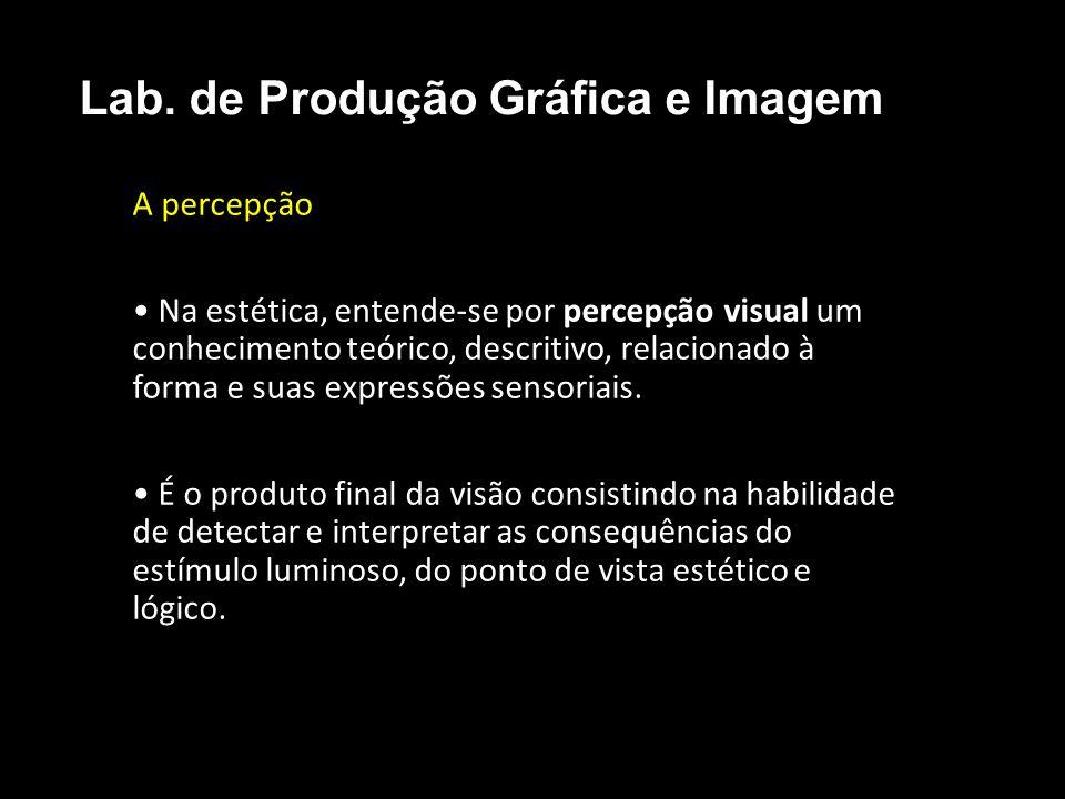 A percepção O maior porém no estudo da percepção visual não é exatamente o que as pessoas vão ver, enxergar, e sim uma tradução da imagem ou composição a ser interpretada em questão.