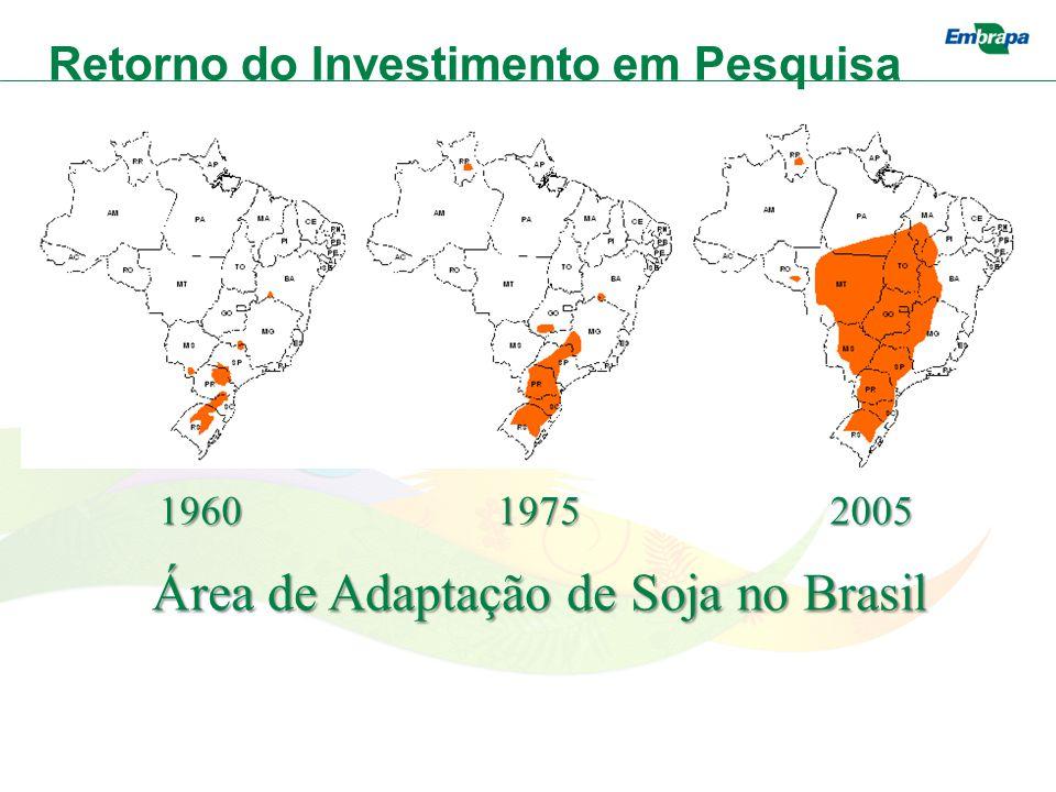 Área de Adaptação de Soja no Brasil 196019752005 Retorno do Investimento em Pesquisa
