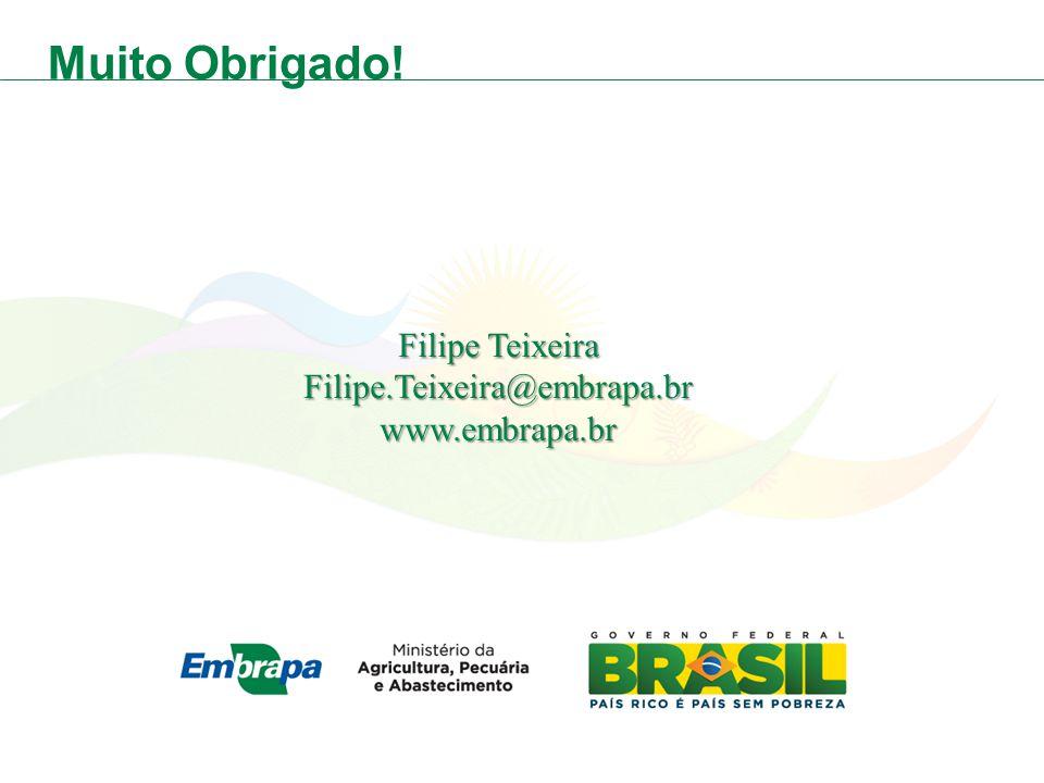 Muito Obrigado! Filipe Teixeira Filipe.Teixeira@embrapa.brwww.embrapa.br