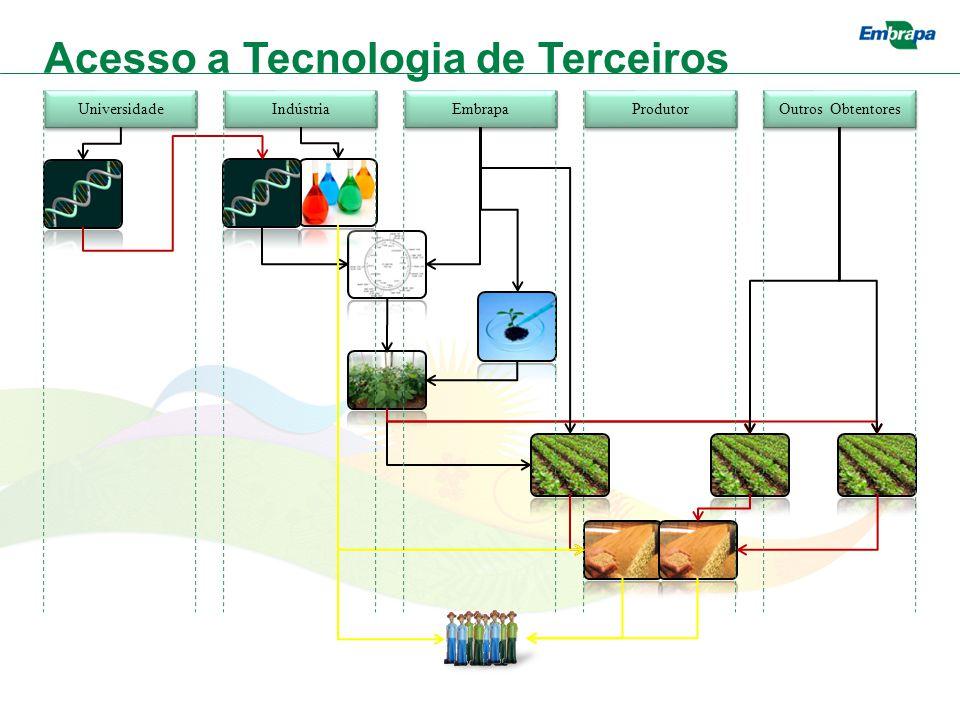 Universidade Indústria Embrapa Produtor Outros Obtentores Acesso a Tecnologia de Terceiros