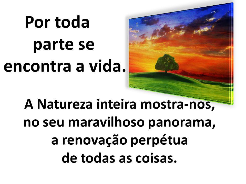 Por toda parte se encontra a vida. A Natureza inteira mostra-nos, no seu maravilhoso panorama, a renovação perpétua de todas as coisas.