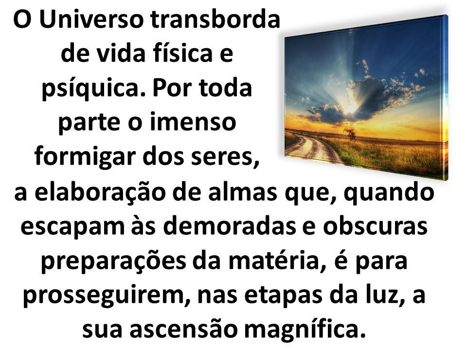 O Universo transborda de vida física e psíquica. Por toda parte o imenso formigar dos seres, a elaboração de almas que, quando escapam às demoradas e