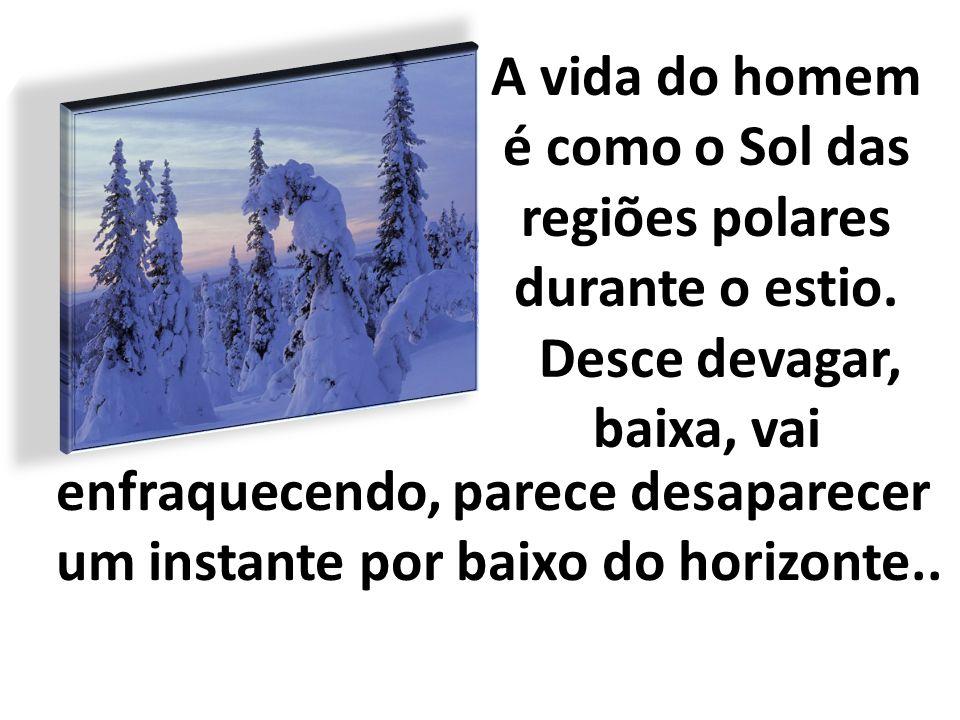 A vida do homem é como o Sol das regiões polares durante o estio. Desce devagar, baixa, vai enfraquecendo, parece desaparecer um instante por baixo do
