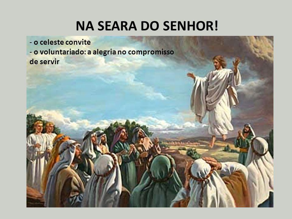 NA SEARA DO SENHOR! - o celeste convite - o voluntariado: a alegria no compromisso de servir