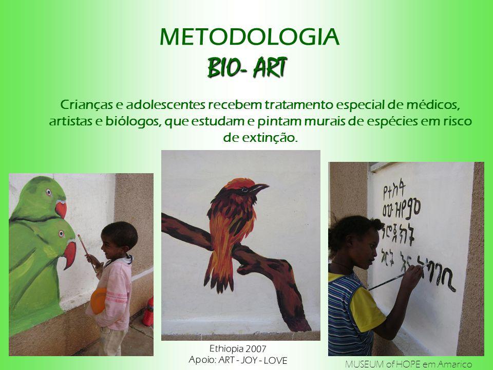 BIO- ART METODOLOGIA BIO- ART Ethiopia 2007 Apoio: ART - JOY - LOVE Crianças e adolescentes recebem tratamento especial de médicos, artistas e biólogos, que estudam e pintam murais de espécies em risco de extinção.