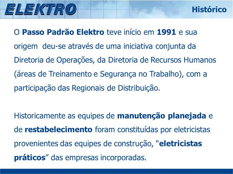 O Passo Padrão Elektro teve início em 1991 e sua origem deu-se através de uma iniciativa conjunta da Diretoria de Operações, da Diretoria de Recursos