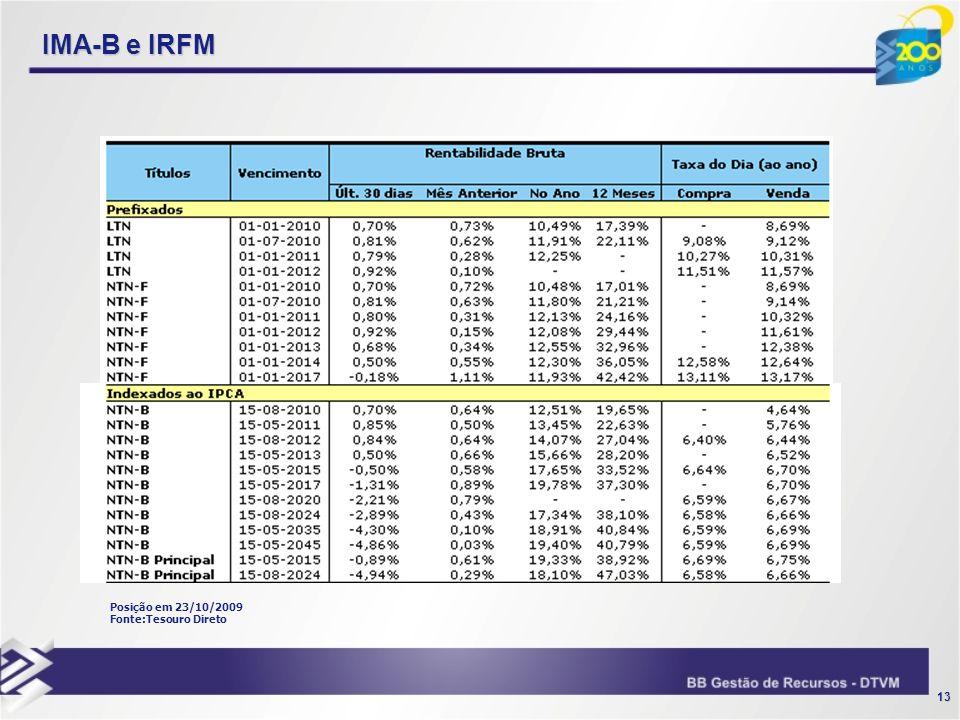 13 IMA-B e IRFM Posição em 23/10/2009 Fonte:Tesouro Direto