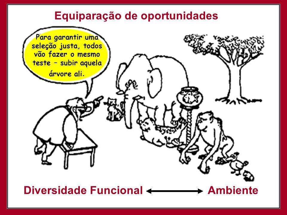 Impacto do ambiente na relação entre deficiência e funcionalidade LF 1 x A 0 = 0 Deficiência LF 5 x A 0 = 0 Deficiência LF 1 x A 1= 1 Deficiência LF 5 x A 5= 25 Deficiência LF: Limitação Funcional A: Ambiente
