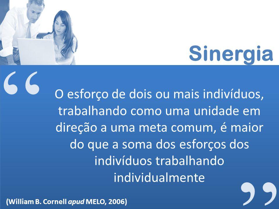 Sinergia O esforço de dois ou mais indivíduos, trabalhando como uma unidade em direção a uma meta comum, é maior do que a soma dos esforços dos indiví