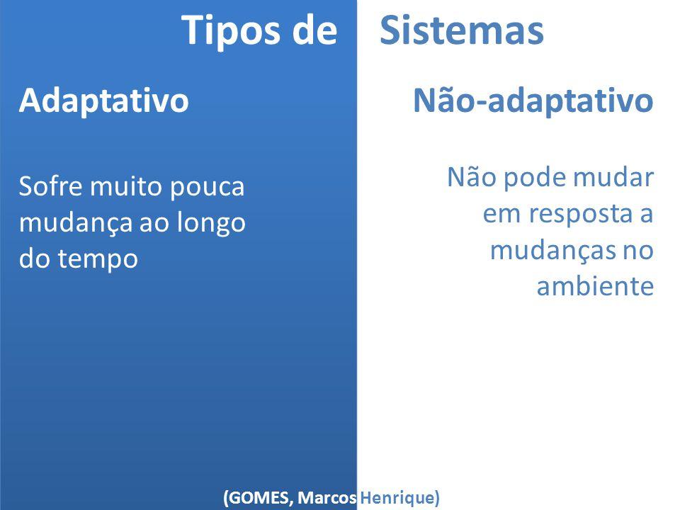 (GOMES, Marcos Henrique) Tipos de Sistemas Adaptativo Sofre muito pouca mudança ao longo do tempo Não-adaptativo Não pode mudar em resposta a mudanças