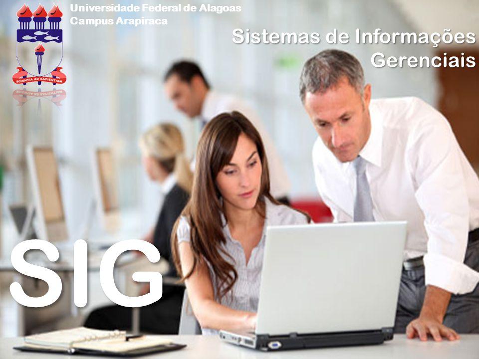 (MELO, 2006) Estrutura do Sistema Organização Formal (Organizacional) Funcional Informal (MELO, 2006) EntradaEtapa 1Etapa 2Etapa 3Saída Enfoque sistêmico Aplicabilidade de SI