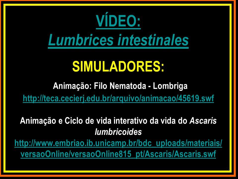 SIMULADORES: Animação: Filo Nematoda - Lombriga http://teca.cecierj.edu.br/arquivo/animacao/45619.swf Animação e Ciclo de vida interativo da vida do A