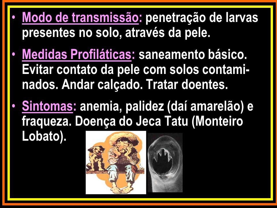 Modo de transmissão: penetração de larvas presentes no solo, através da pele. Medidas Profiláticas: saneamento básico. Evitar contato da pele com solo