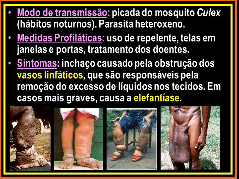 Modo de transmissão: picada do mosquito Culex (hábitos noturnos). Parasita heteroxeno. Medidas Profiláticas: uso de repelente, telas em janelas e port