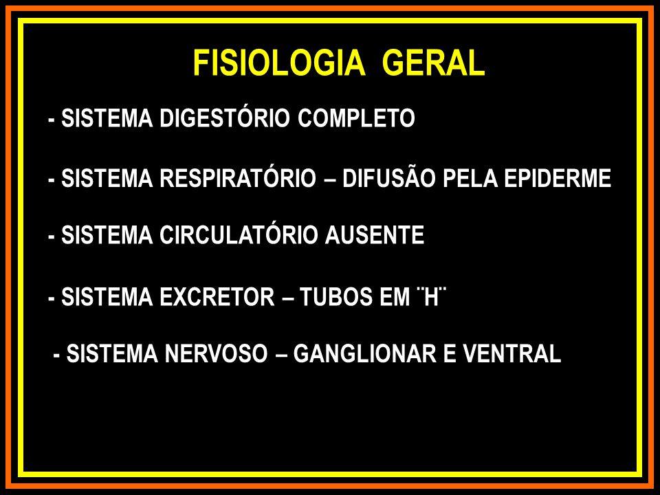 FISIOLOGIA GERAL - SISTEMA DIGESTÓRIO COMPLETO - SISTEMA CIRCULATÓRIO AUSENTE - SISTEMA NERVOSO – GANGLIONAR E VENTRAL - SISTEMA RESPIRATÓRIO – DIFUSÃ