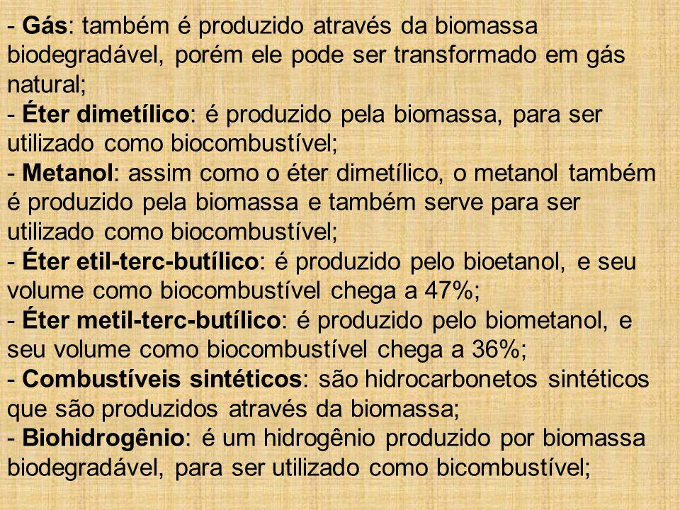 - Gás: também é produzido através da biomassa biodegradável, porém ele pode ser transformado em gás natural; - Éter dimetílico: é produzido pela biomassa, para ser utilizado como biocombustível; - Metanol: assim como o éter dimetílico, o metanol também é produzido pela biomassa e também serve para ser utilizado como biocombustível; - Éter etil-terc-butílico: é produzido pelo bioetanol, e seu volume como biocombustível chega a 47%; - Éter metil-terc-butílico: é produzido pelo biometanol, e seu volume como biocombustível chega a 36%; - Combustíveis sintéticos: são hidrocarbonetos sintéticos que são produzidos através da biomassa; - Biohidrogênio: é um hidrogênio produzido por biomassa biodegradável, para ser utilizado como bicombustível;