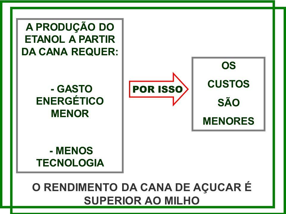 A PRODUÇÃO DO ETANOL A PARTIR DA CANA REQUER: - GASTO ENERGÉTICO MENOR - MENOS TECNOLOGIA O RENDIMENTO DA CANA DE AÇUCAR É SUPERIOR AO MILHO OS CUSTOS SÃO MENORES POR ISSO