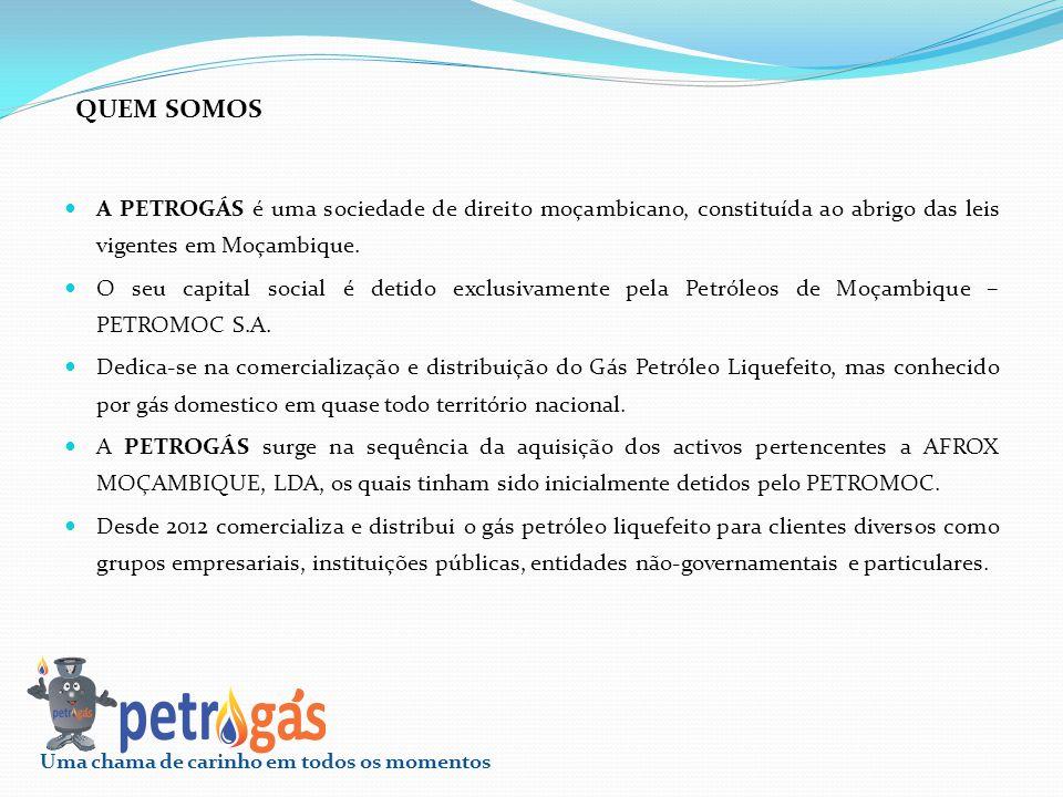 A PETROGÁS é uma sociedade de direito moçambicano, constituída ao abrigo das leis vigentes em Moçambique. O seu capital social é detido exclusivamente