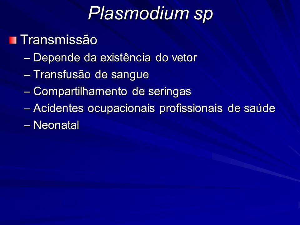 Transmissão –Depende da existência do vetor –Transfusão de sangue –Compartilhamento de seringas –Acidentes ocupacionais profissionais de saúde –Neonat