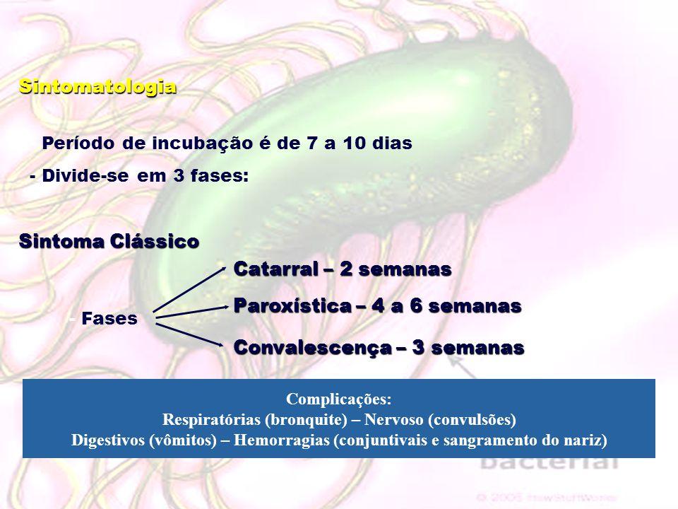 Sintomatologia - Período de incubação é de 7 a 10 dias - Divide-se em 3 fases: Sintoma Clássico - Fases Catarral – 2 semanas Paroxística – 4 a 6 seman