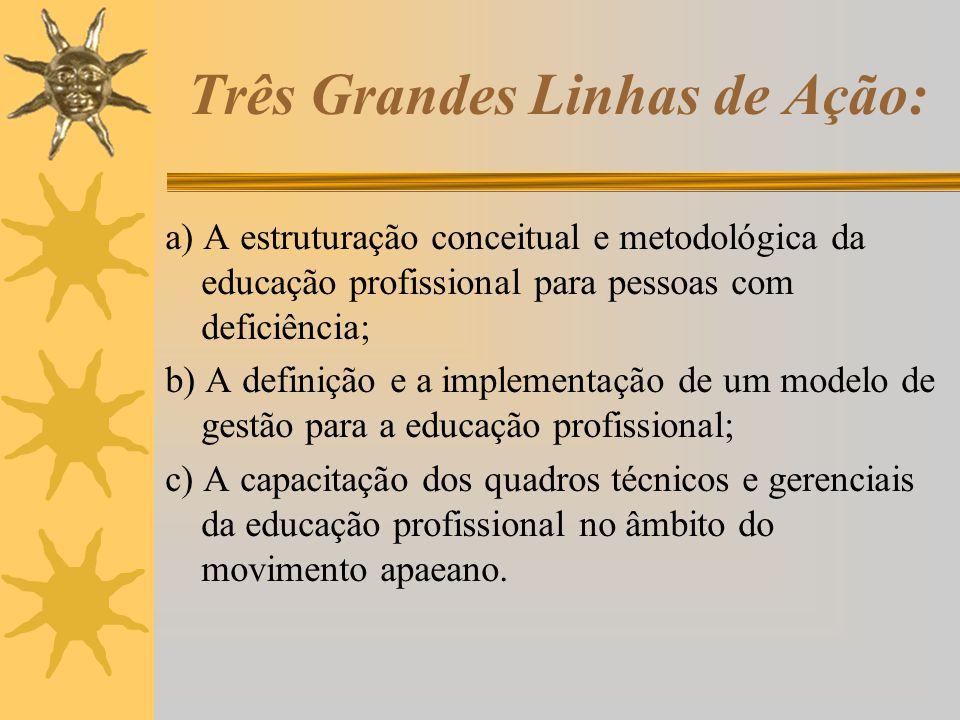 Três Grandes Linhas de Ação: a) A estruturação conceitual e metodológica da educação profissional para pessoas com deficiência; b) A definição e a imp