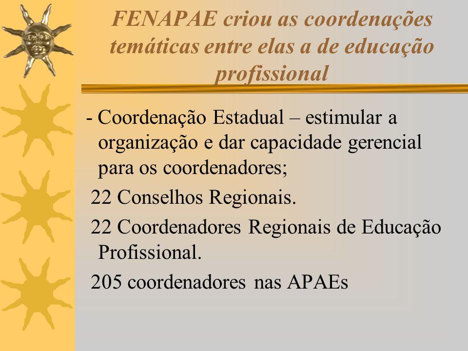 FENAPAE criou as coordenações temáticas entre elas a de educação profissional - Coordenação Estadual – estimular a organização e dar capacidade gerenc
