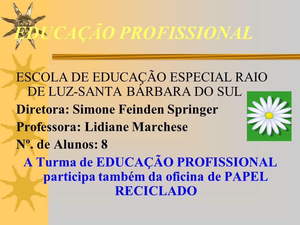 EDUCAÇÃO PROFISSIONAL ESCOLA DE EDUCAÇÃO ESPECIAL RAIO DE LUZ-SANTA BÁRBARA DO SUL Diretora: Simone Feinden Springer Professora: Lidiane Marchese Nº.