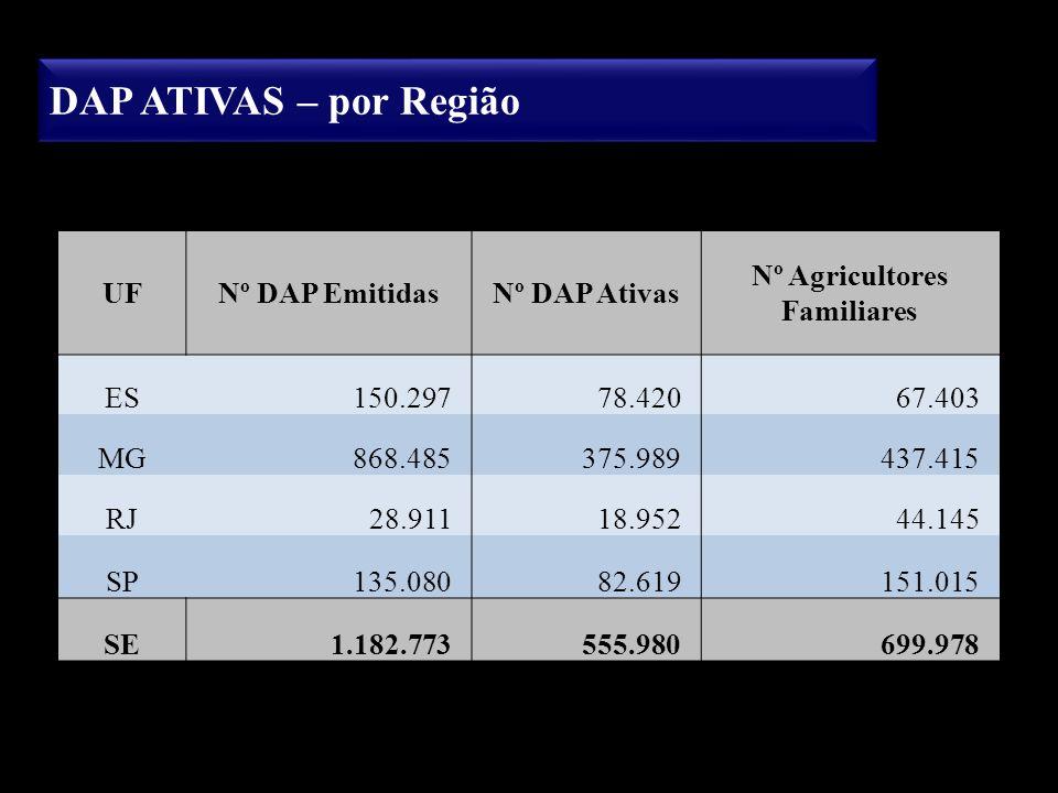 DAP ATIVAS – por Região UFNº DAP EmitidasNº DAP Ativas Nº Agricultores Familiares ES150.29778.42067.403 MG868.485375.989437.415 RJ28.91118.95244.145 S
