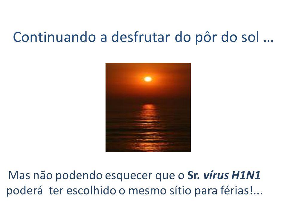 Continuando a desfrutar do pôr do sol … Mas não podendo esquecer que o Sr. vírus H1N1 poderá ter escolhido o mesmo sítio para férias!...