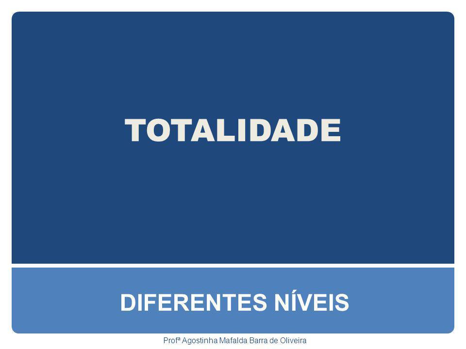 TOTALIDADE DIFERENTES NÍVEIS Profª Agostinha Mafalda Barra de Oliveira