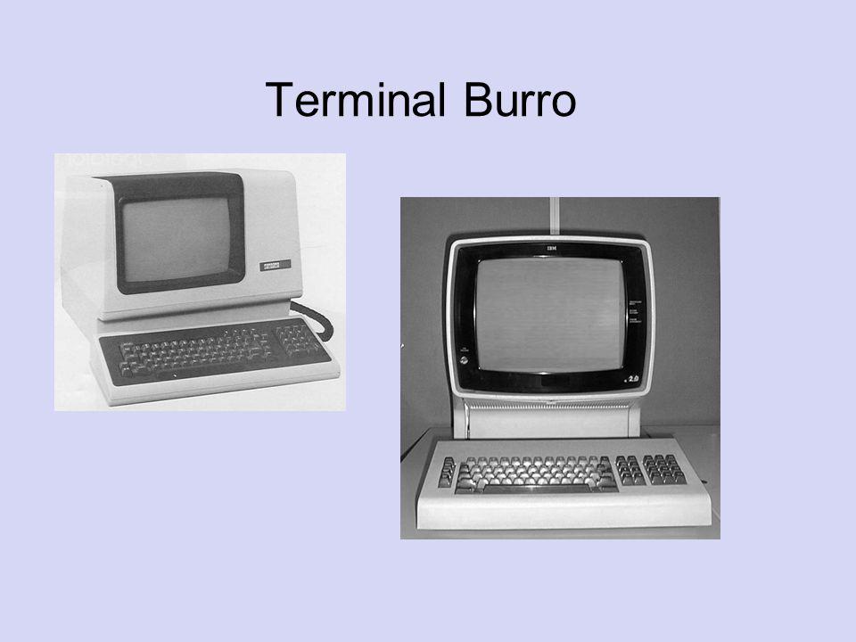 Terminal Burro