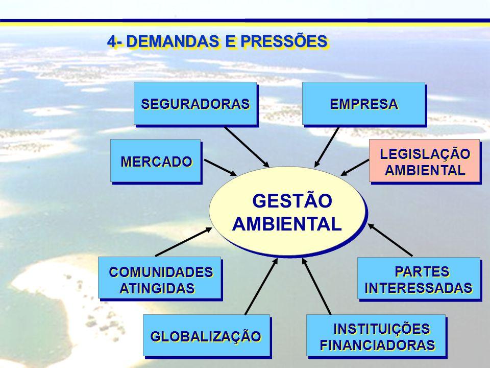 GESTÃO AMBIENTAL LEGISLAÇÃO AMBIENTAL LEGISLAÇÃO AMBIENTAL COMUNIDADES ATINGIDAS COMUNIDADES ATINGIDAS PARTES INTERESSADAS PARTES INTERESSADAS EMPRESA MERCADO INSTITUIÇÕES FINANCIADORAS INSTITUIÇÕES FINANCIADORAS GLOBALIZAÇÃO SEGURADORAS 4- DEMANDAS E PRESSÕES