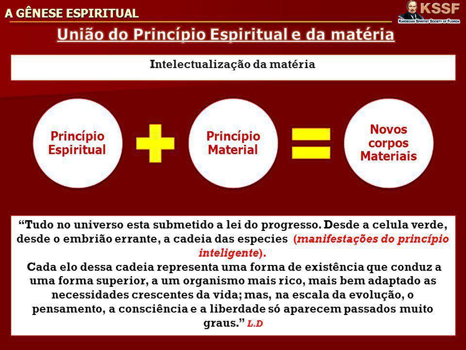 A GÊNESE ESPIRITUAL Intelectualização da matéria Princípio Espiritual Princípio Material Novos corpos Materiais Tudo no universo esta submetido a lei do progresso.