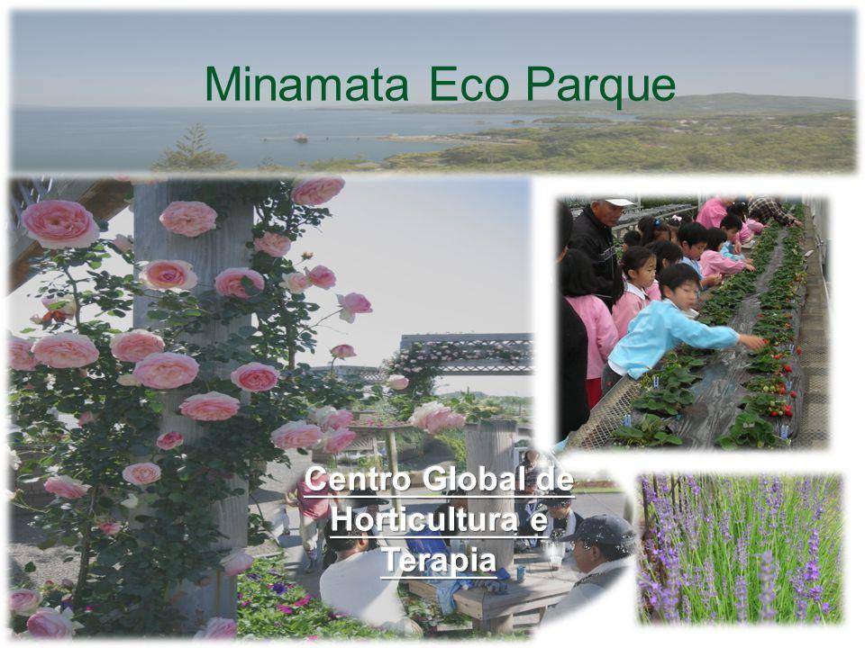 O Jardim de Rosas Dezembro – Janeiro Colheita. Minamata Eco Parque Jardim de Rosas - Manejo