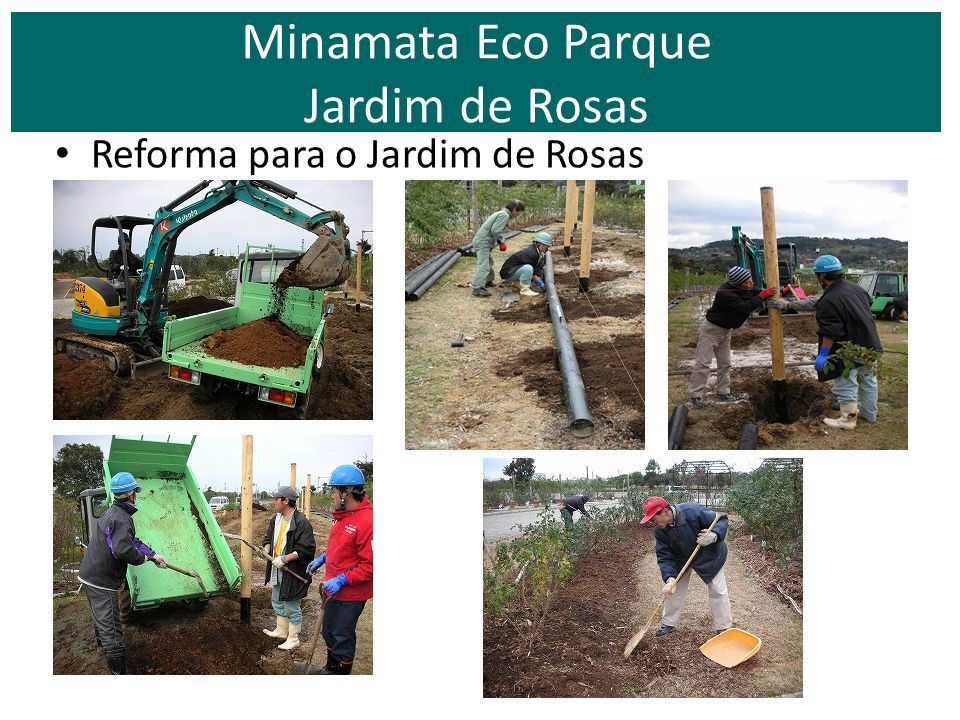 O Jardim de Rosas em Setembro Poda de verão. Minamata Eco Parque Jardim de Rosas - Manejo