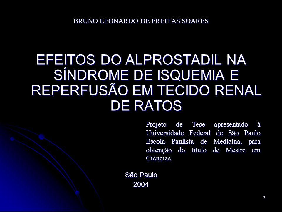 1 BRUNO LEONARDO DE FREITAS SOARES EFEITOS DO ALPROSTADIL NA SÍNDROME DE ISQUEMIA E REPERFUSÃO EM TECIDO RENAL DE RATOS São Paulo 2004 Projeto de Tese