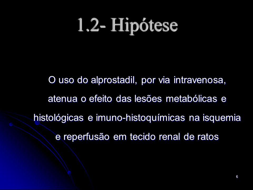 6 1.2- Hipótese O uso do alprostadil, por via intravenosa, atenua o efeito das lesões metabólicas e histológicas e imuno-histoquímicas na isquemia e r