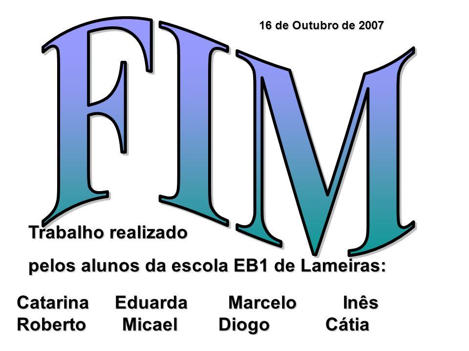 Trabalho realizado pelos alunos da escola EB1 de Lameiras: 16 de Outubro de 2007 Catarina Eduarda Marcelo Inês Roberto Micael Diogo Cátia