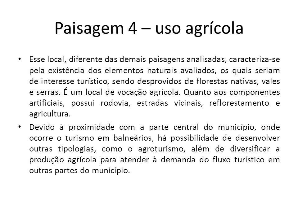 Paisagem 4 – uso agrícola Esse local, diferente das demais paisagens analisadas, caracteriza-se pela existência dos elementos naturais avaliados, os q