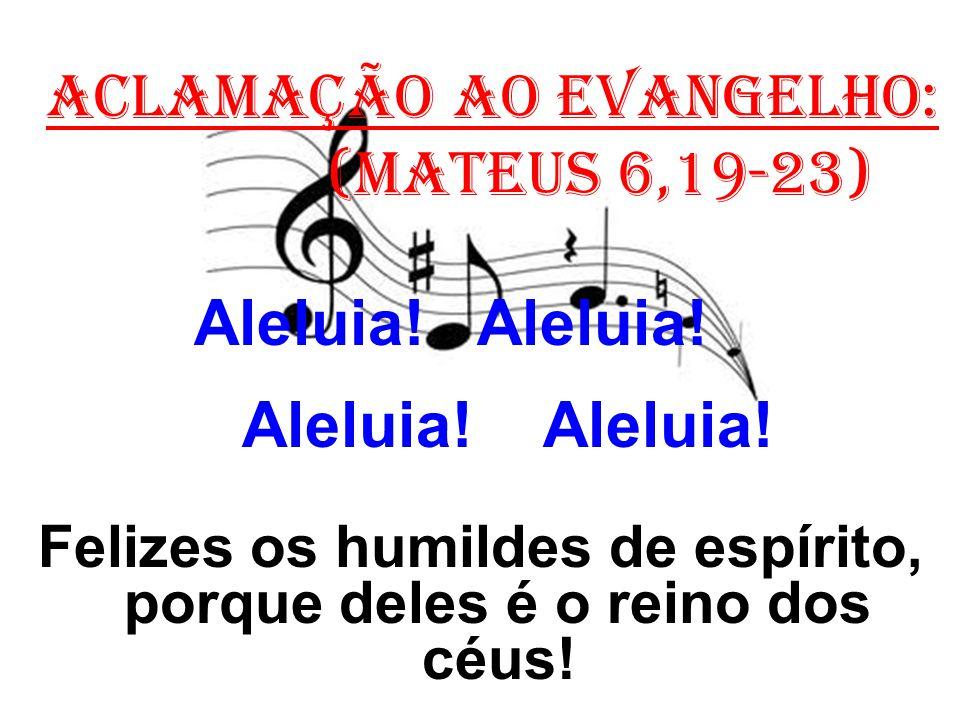 ACLAMAÇÃO AO EVANGELHO: (Mateus 6,19-23) Aleluia! Aleluia! Felizes os humildes de espírito, porque deles é o reino dos céus!
