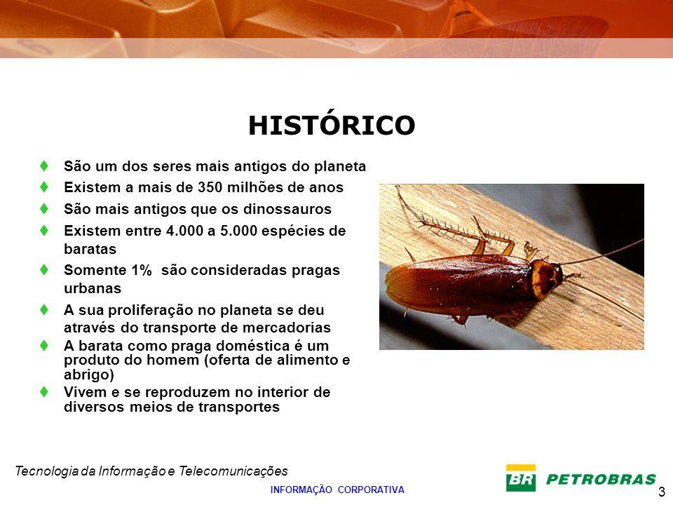 Tecnologia da Informação e Telecomunicações 3 INFORMAÇÃO CORPORATIVA HISTÓRICO São um dos seres mais antigos do planeta Existem a mais de 350 milhões