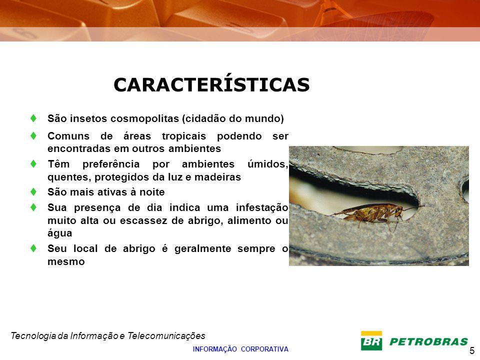 Tecnologia da Informação e Telecomunicações 5 INFORMAÇÃO CORPORATIVA São insetos cosmopolitas (cidadão do mundo) Comuns de áreas tropicais podendo ser