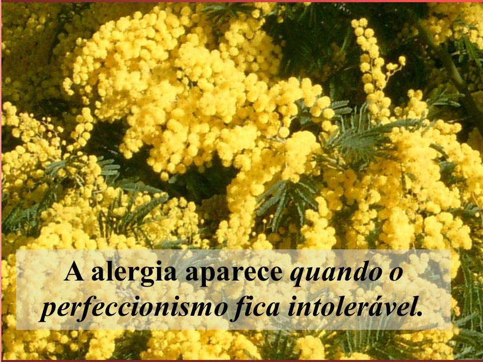 A alergia aparece quando o perfeccionismo fica intolerável.