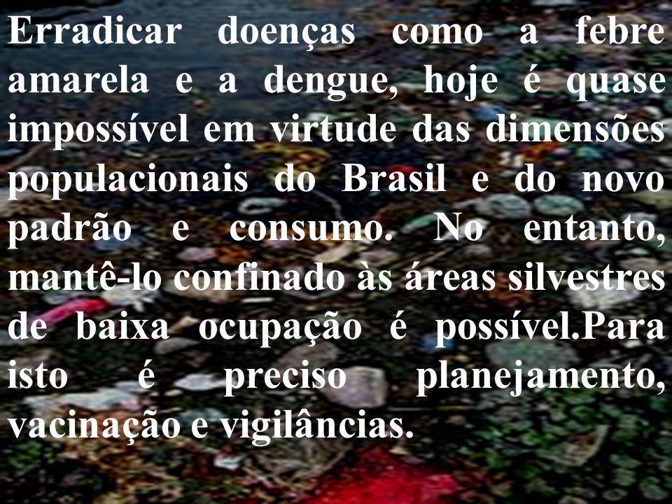 Erradicar doenças como a febre amarela e a dengue, hoje é quase impossível em virtude das dimensões populacionais do Brasil e do novo padrão e consumo
