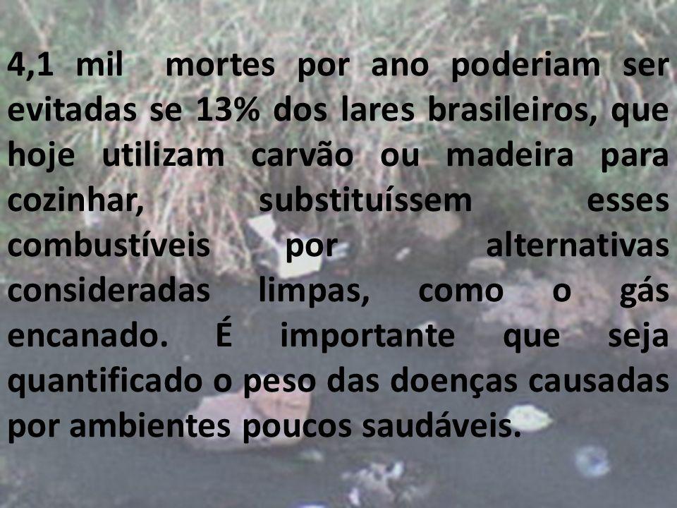 4,1 mil mortes por ano poderiam ser evitadas se 13% dos lares brasileiros, que hoje utilizam carvão ou madeira para cozinhar, substituíssem esses comb
