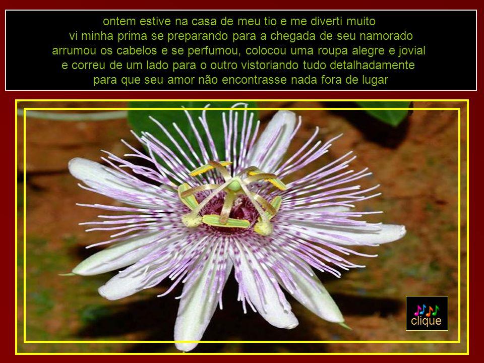texto desconheço a autoria formatação adao-las@ig.com.br 03-07-07 texto, som e imagens retirados da internet