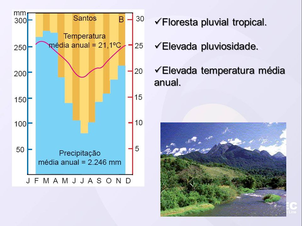 Floresta pluvial tropical. Floresta pluvial tropical. Elevada pluviosidade. Elevada pluviosidade. Elevada temperatura média anual. Elevada temperatura